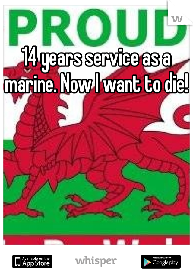 14 years service as a marine. Now I want to die!