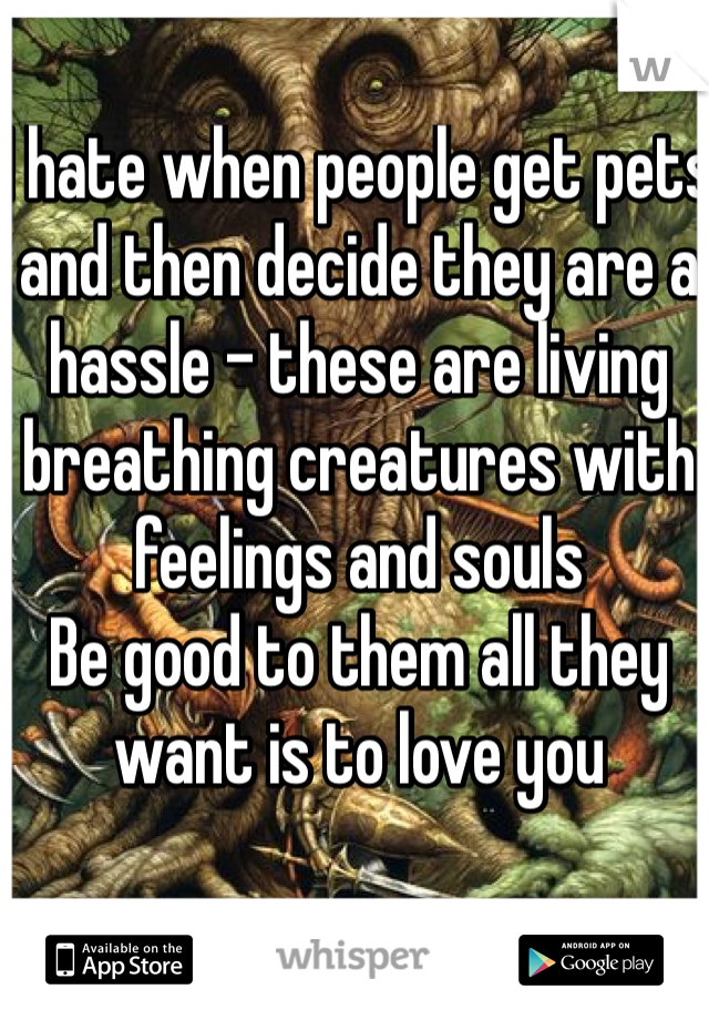 I hate when people get pets and then decide they are a hassle - these are living breathing creatures with feelings and souls  Be good to them all they want is to love you