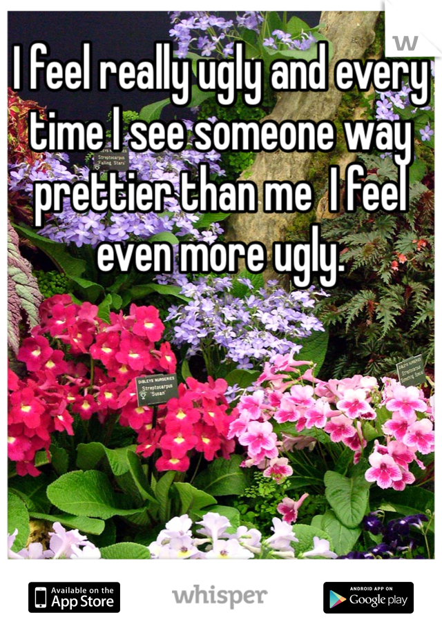 I feel really ugly and every time I see someone way prettier than me  I feel even more ugly.