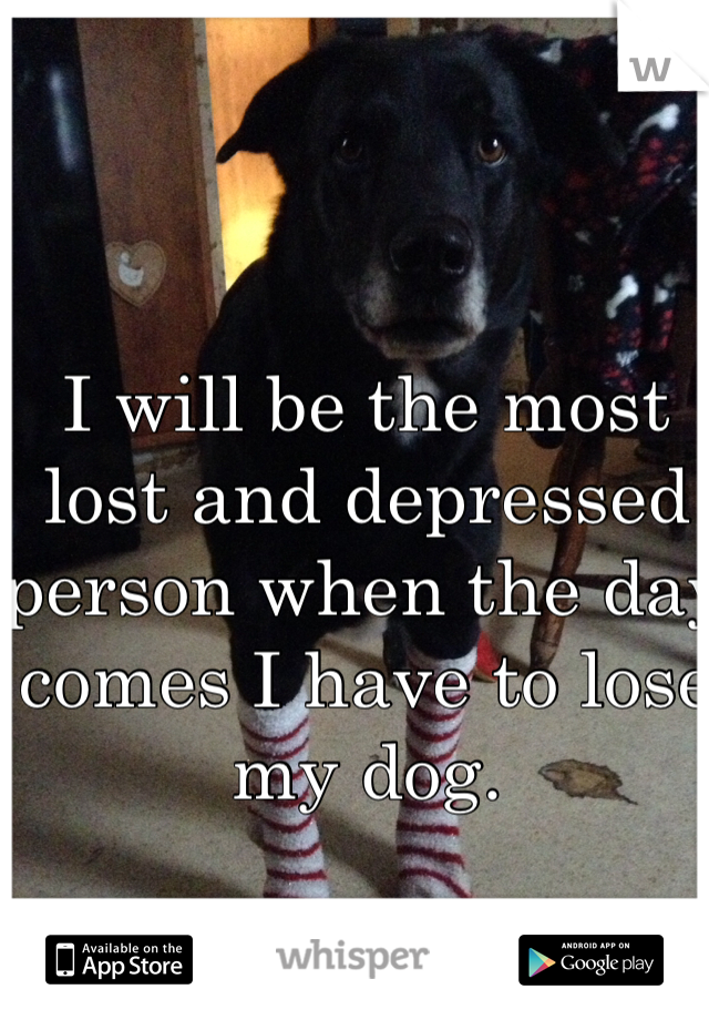 I will be the most lost and depressed person when the day comes I have to lose my dog.