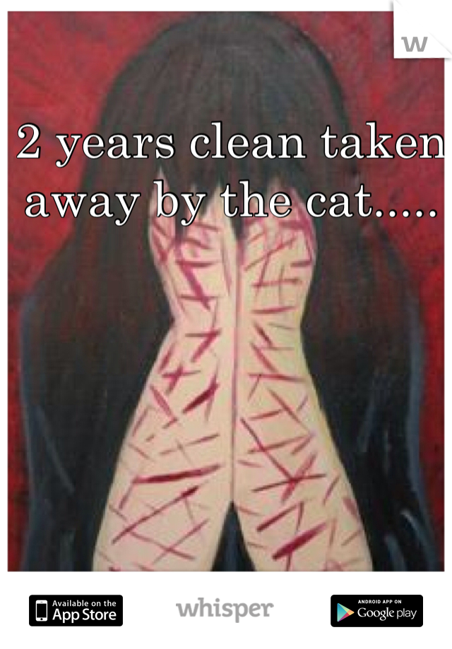 2 years clean taken away by the cat.....