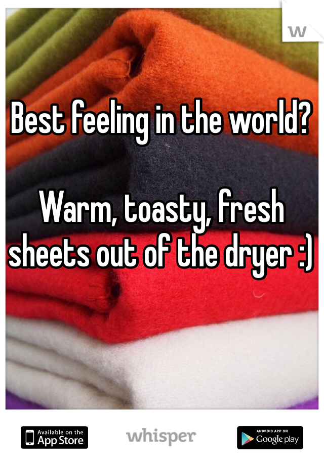Best feeling in the world?   Warm, toasty, fresh sheets out of the dryer :)