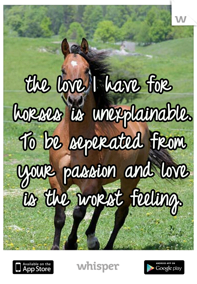 the love I have for horses is unexplainable. To be seperated from your passion and love is the worst feeling.