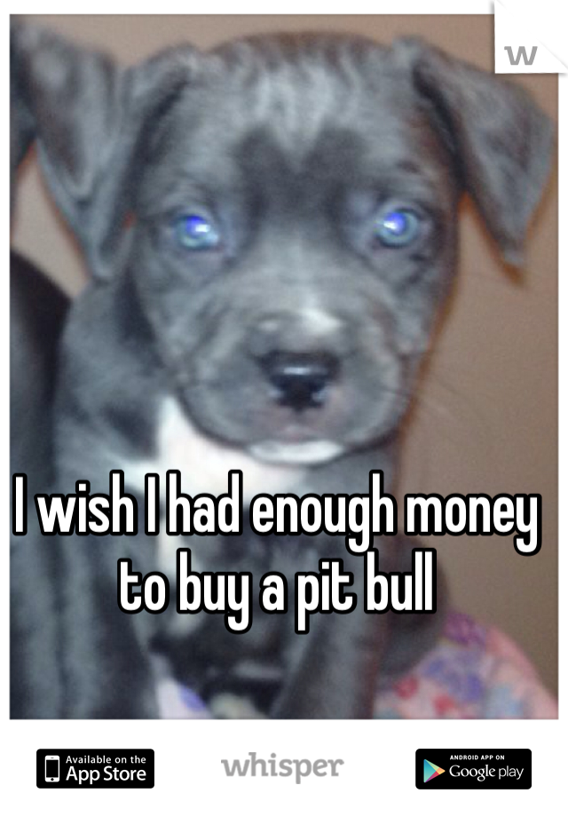I wish I had enough money to buy a pit bull
