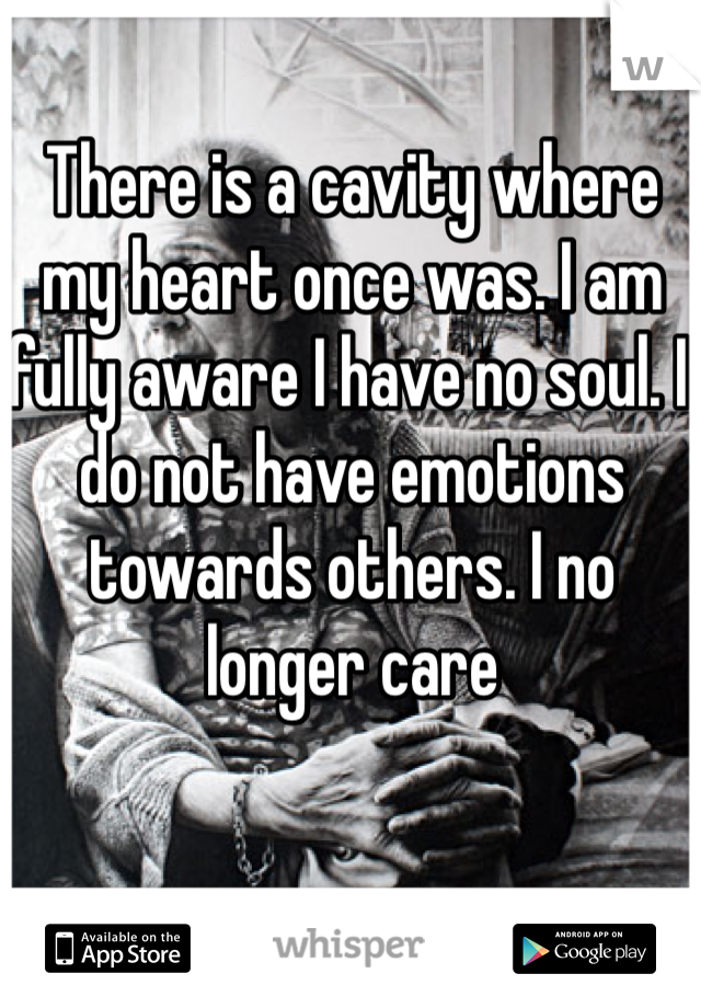 There is a cavity where my heart once was. I am fully aware I have no soul. I do not have emotions towards others. I no longer care