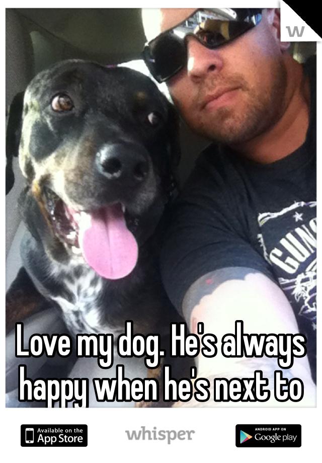 Love my dog. He's always happy when he's next to me