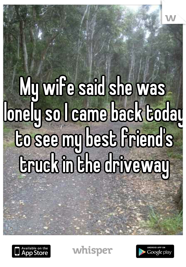 My wife said she was lonely so I came back today to see my best friend's truck in the driveway