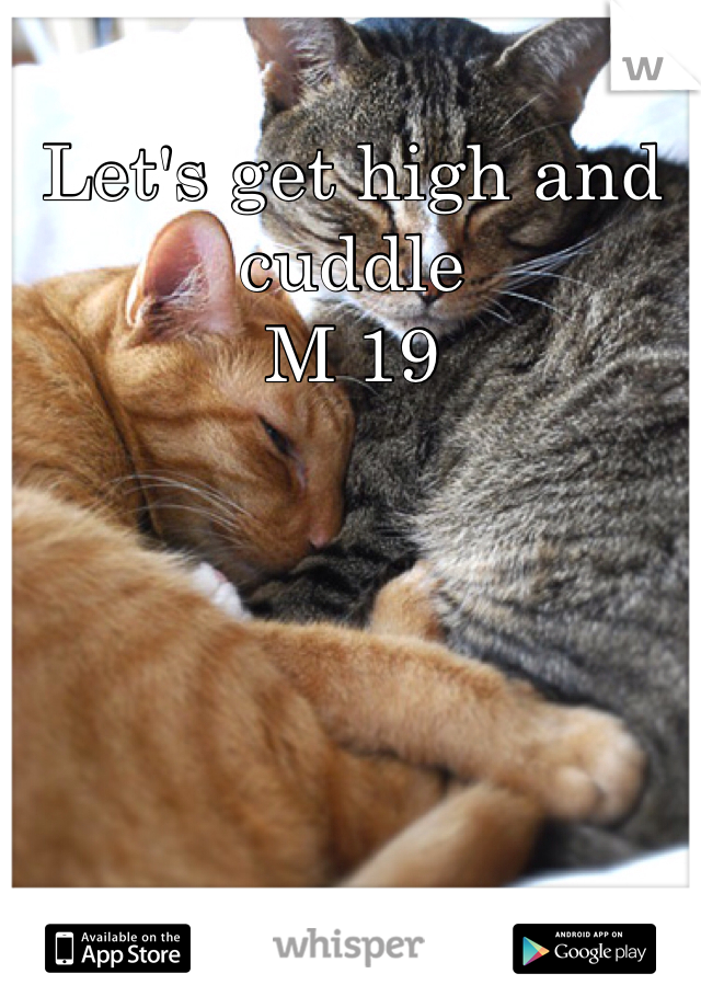 Let's get high and cuddle M 19