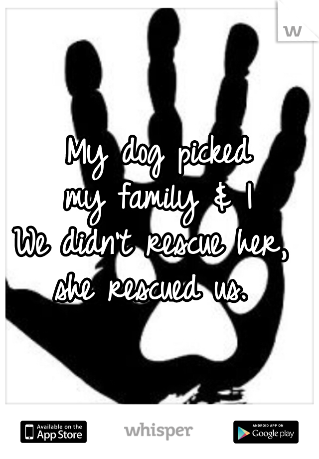My dog picked my family & I We didn't rescue her,  she rescued us.