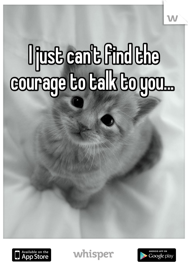 I just can't find the courage to talk to you...