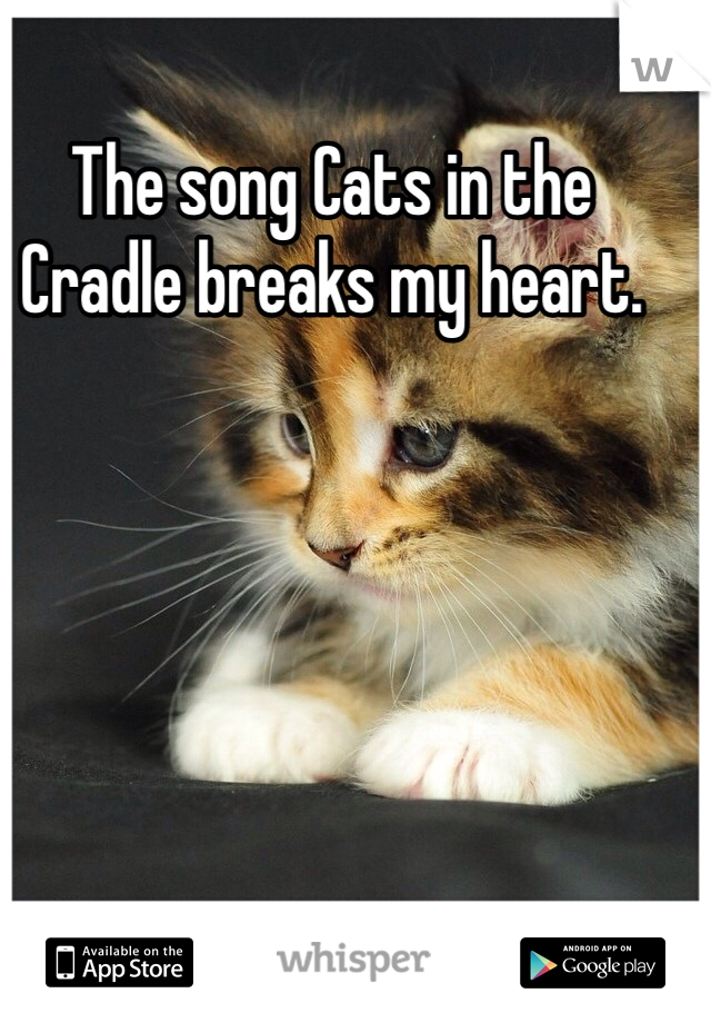 The song Cats in the Cradle breaks my heart.
