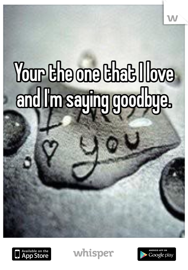 Your the one that I love and I'm saying goodbye.