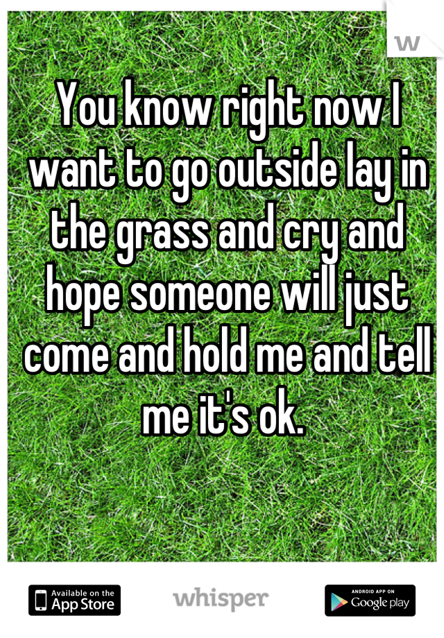 You know right now I want to go outside lay in the grass and cry and hope someone will just come and hold me and tell me it's ok.