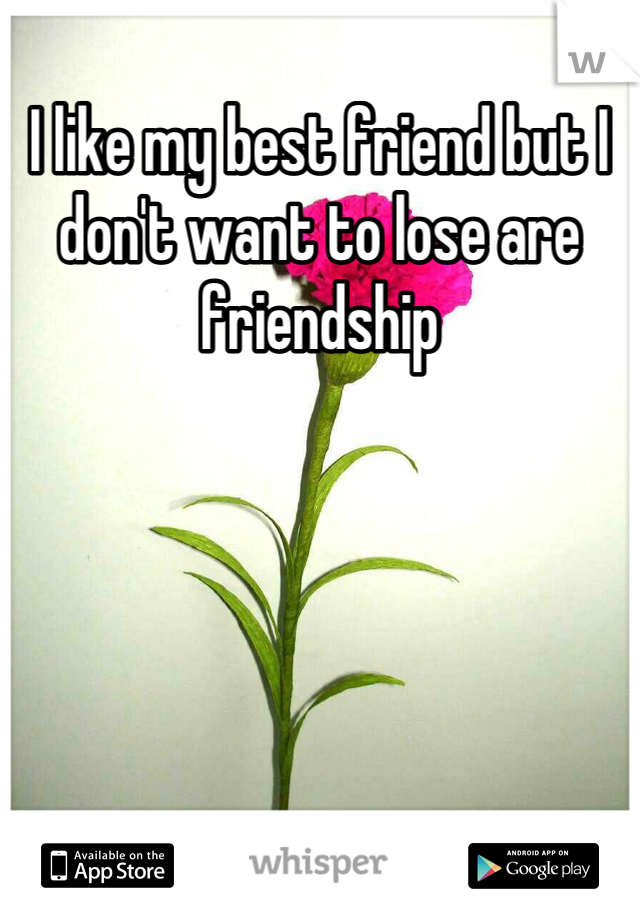 I like my best friend but I don't want to lose are friendship