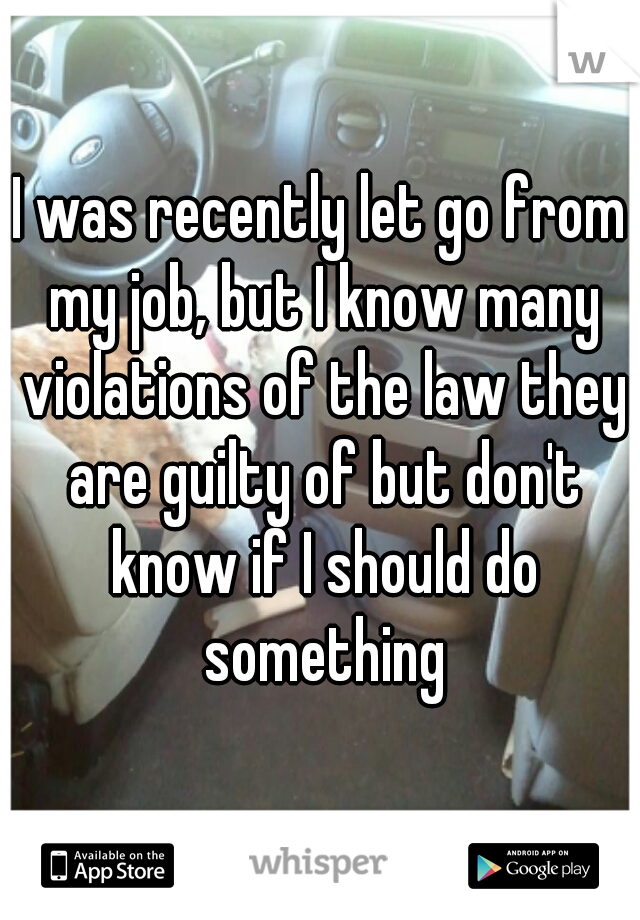 I was recently let go from my job, but I know many violations of the law they are guilty of but don't know if I should do something