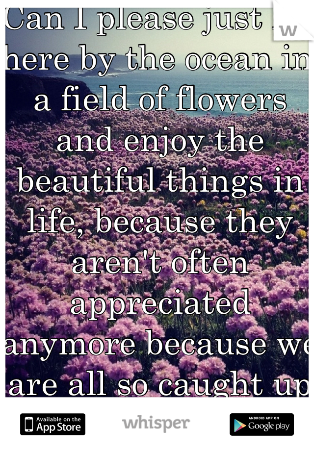 Can I please just lay here by the ocean in a field of flowers and enjoy the beautiful things in life, because they aren't often appreciated anymore because we are all so caught up in everything else.