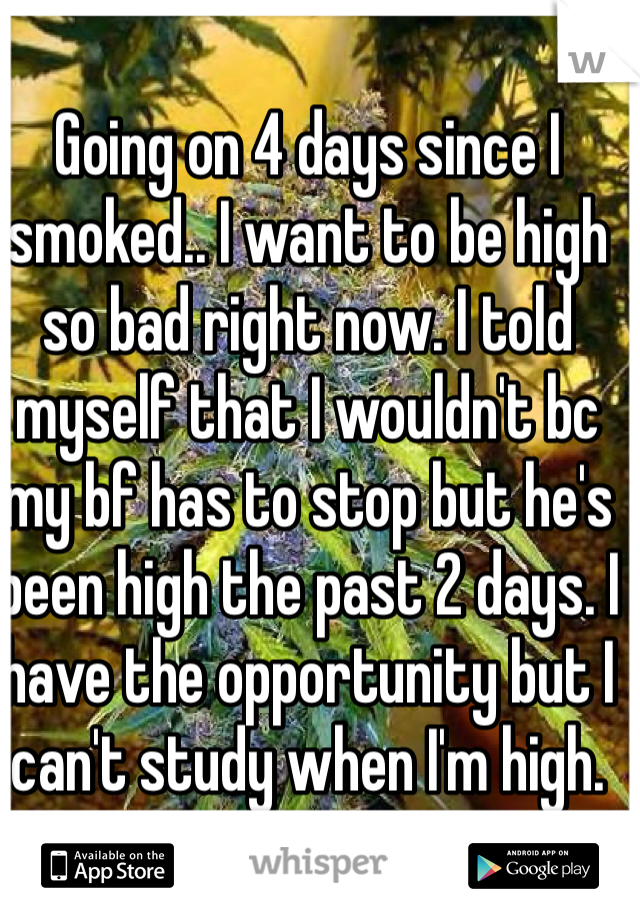 Going on 4 days since I smoked.. I want to be high so bad right now. I told myself that I wouldn't bc my bf has to stop but he's been high the past 2 days. I have the opportunity but I can't study when I'm high.