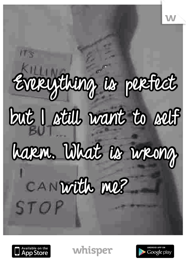 Everything is perfect but I still want to self harm. What is wrong with me?