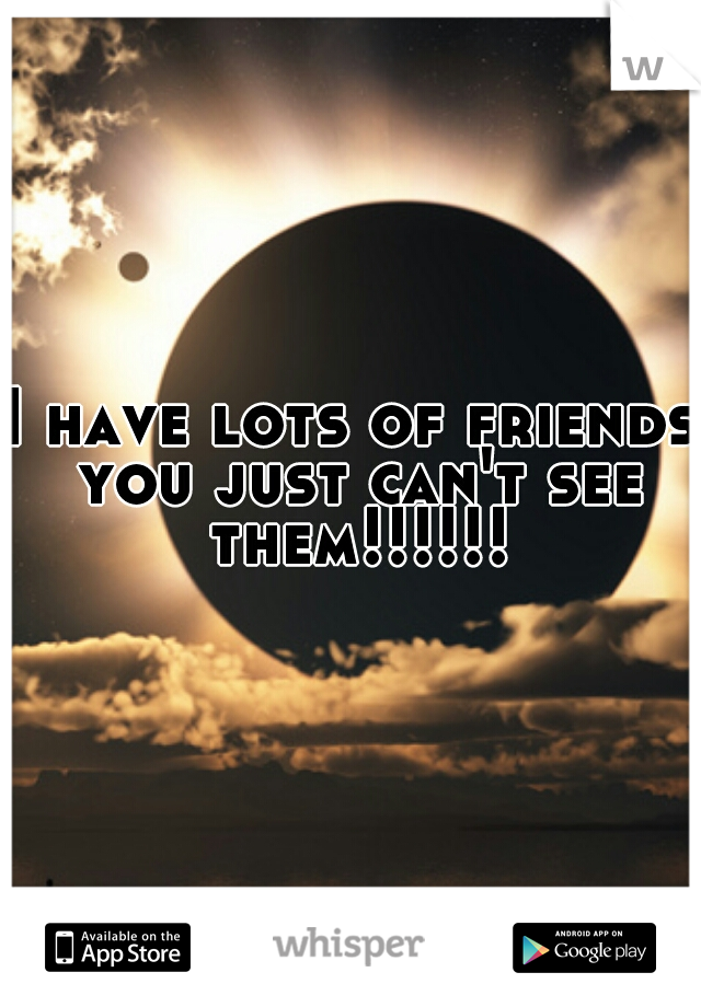 I have lots of friends you just can't see them!!!!!!