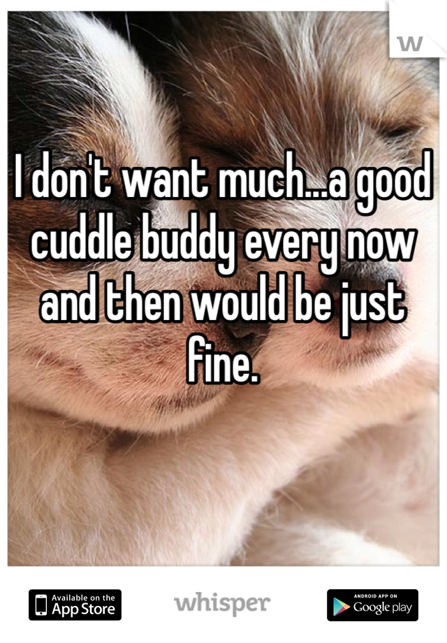 I don't want much...a good cuddle buddy every now and then would be just fine.