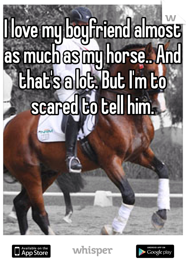 I love my boyfriend almost as much as my horse.. And that's a lot. But I'm to scared to tell him.
