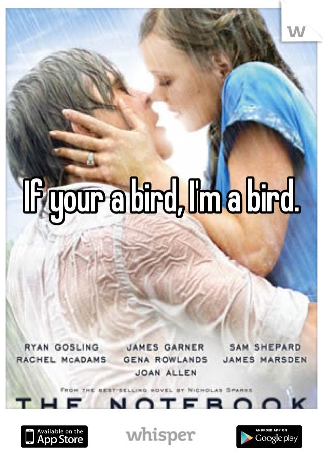 If your a bird, I'm a bird.