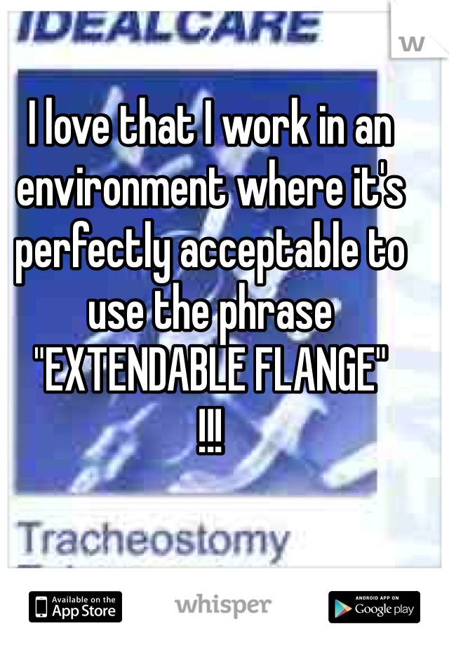 "I love that I work in an environment where it's perfectly acceptable to use the phrase  ""EXTENDABLE FLANGE"" !!!"