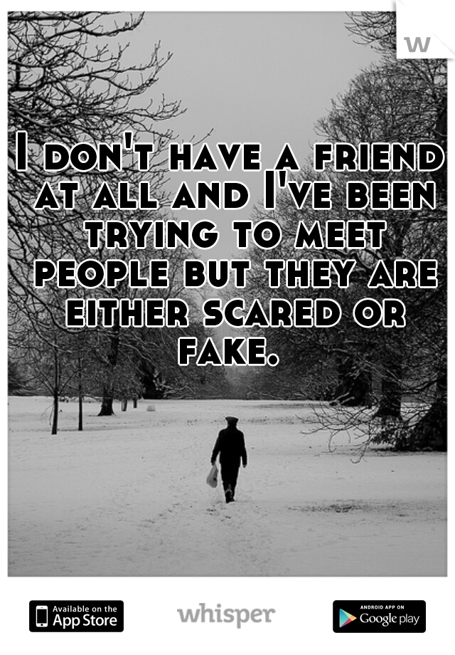 I don't have a friend at all and I've been trying to meet people but they are either scared or fake.