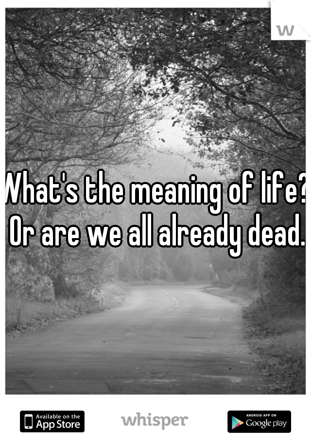 What's the meaning of life? Or are we all already dead.