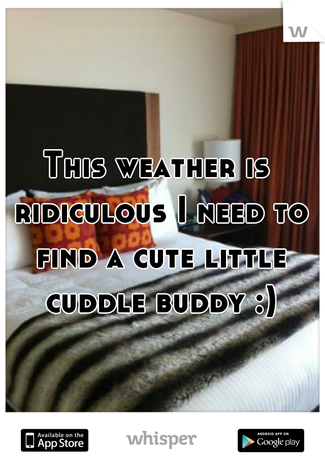 This weather is ridiculous I need to find a cute little cuddle buddy :)