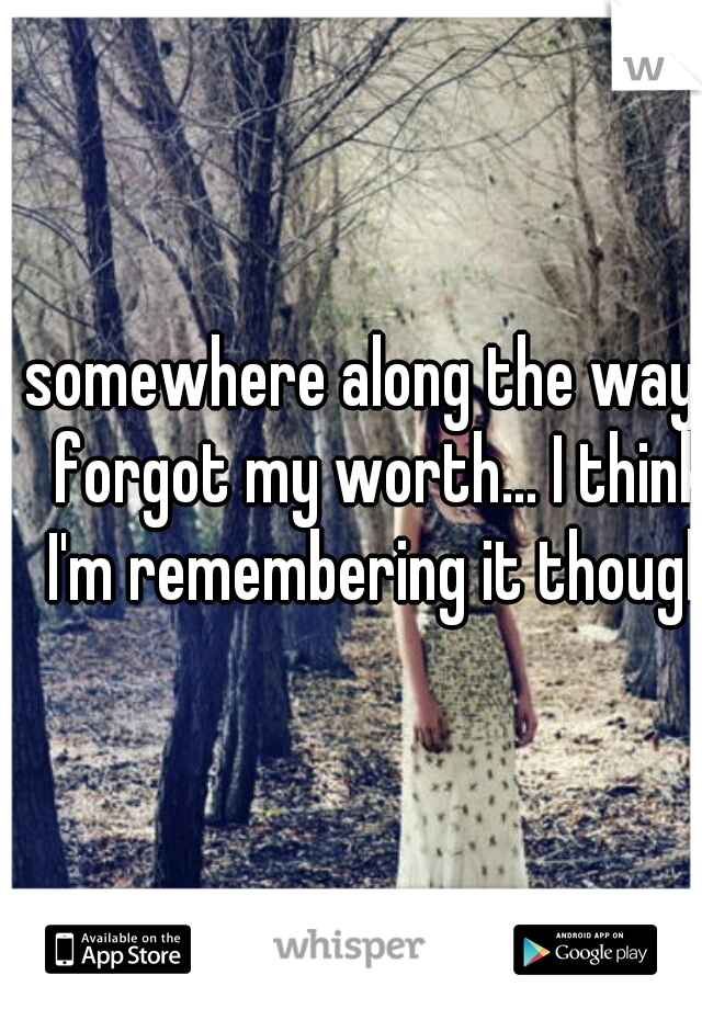 somewhere along the way I forgot my worth... I think I'm remembering it though