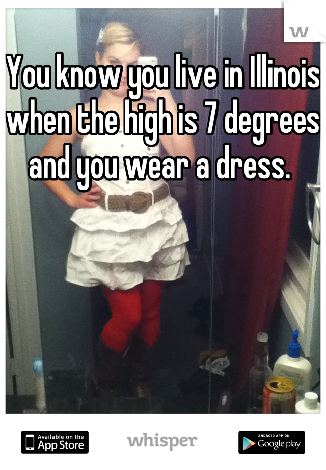 You know you live in Illinois when the high is 7 degrees and you wear a dress.