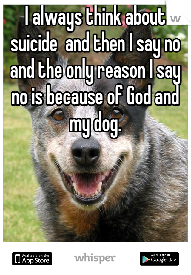 I always think about suicide  and then I say no and the only reason I say no is because of God and my dog.