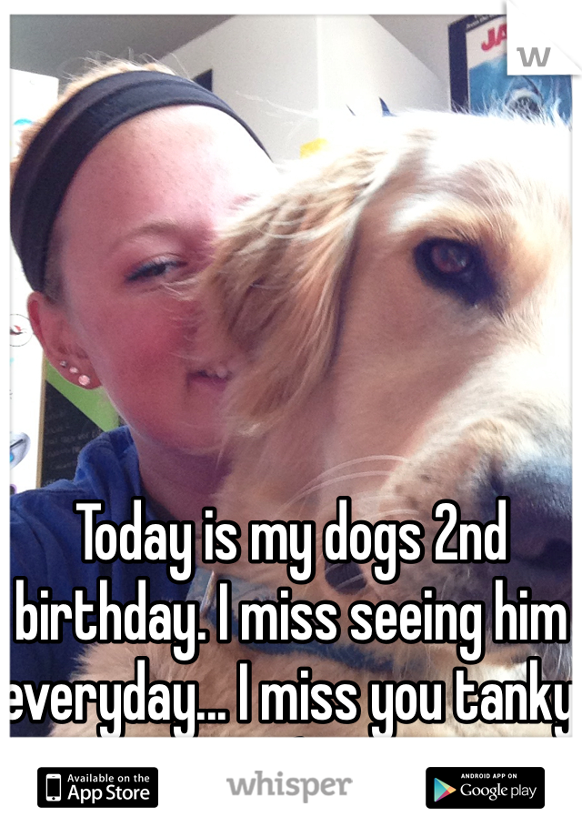 Today is my dogs 2nd birthday. I miss seeing him everyday... I miss you tanky :(