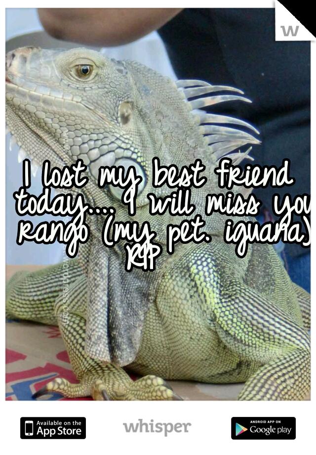 I lost my best friend today.... I will miss you rango (my pet. iguana) RIP