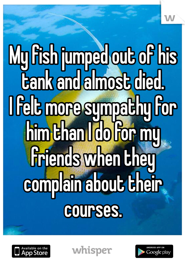 My fish jumped out of his tank and almost died. I felt more sympathy for him than I do for my friends when they complain about their courses.