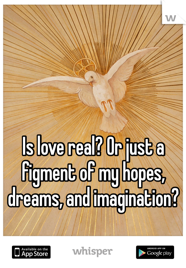 Is love real? Or just a figment of my hopes, dreams, and imagination?