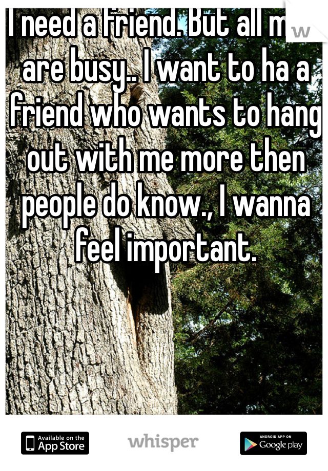 I need a friend. But all mine are busy.. I want to ha a friend who wants to hang out with me more then people do know., I wanna feel important.