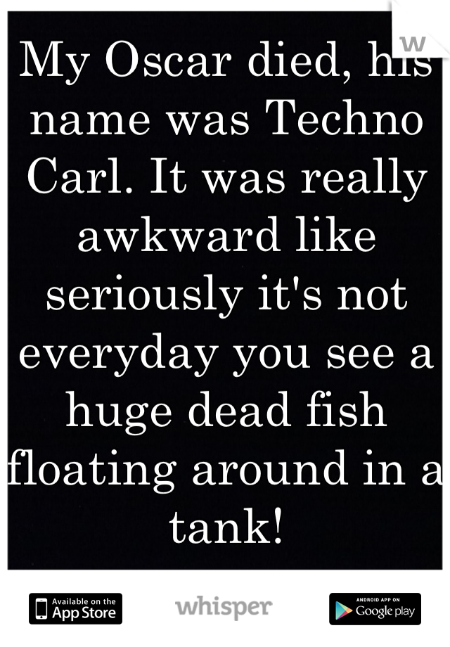 My Oscar died, his name was Techno Carl. It was really awkward like seriously it's not everyday you see a huge dead fish floating around in a tank!