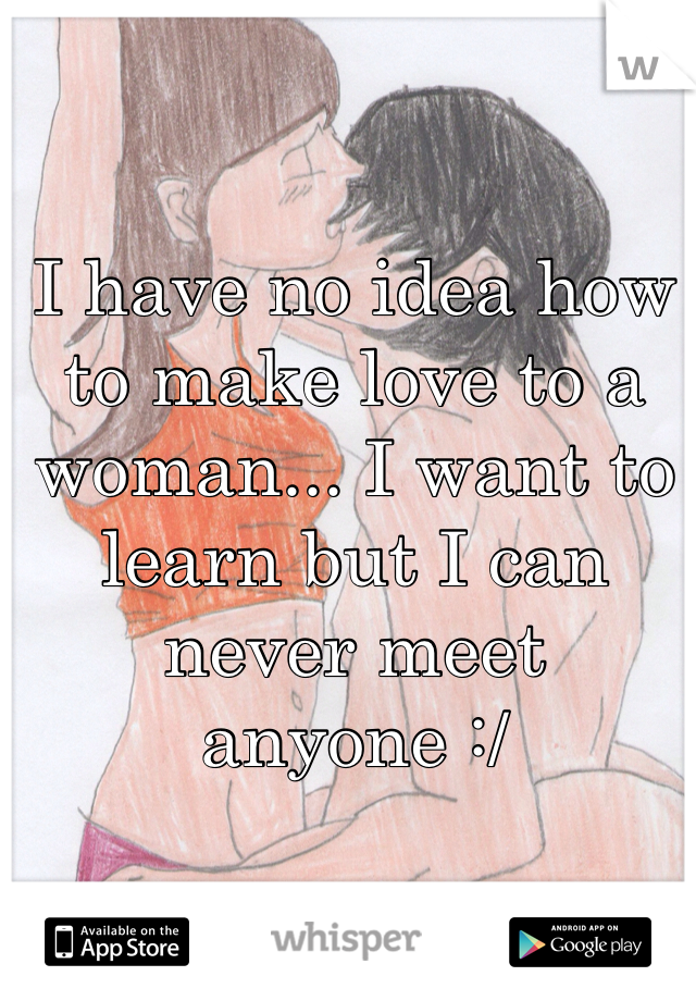 I have no idea how to make love to a woman... I want to learn but I can never meet anyone :/
