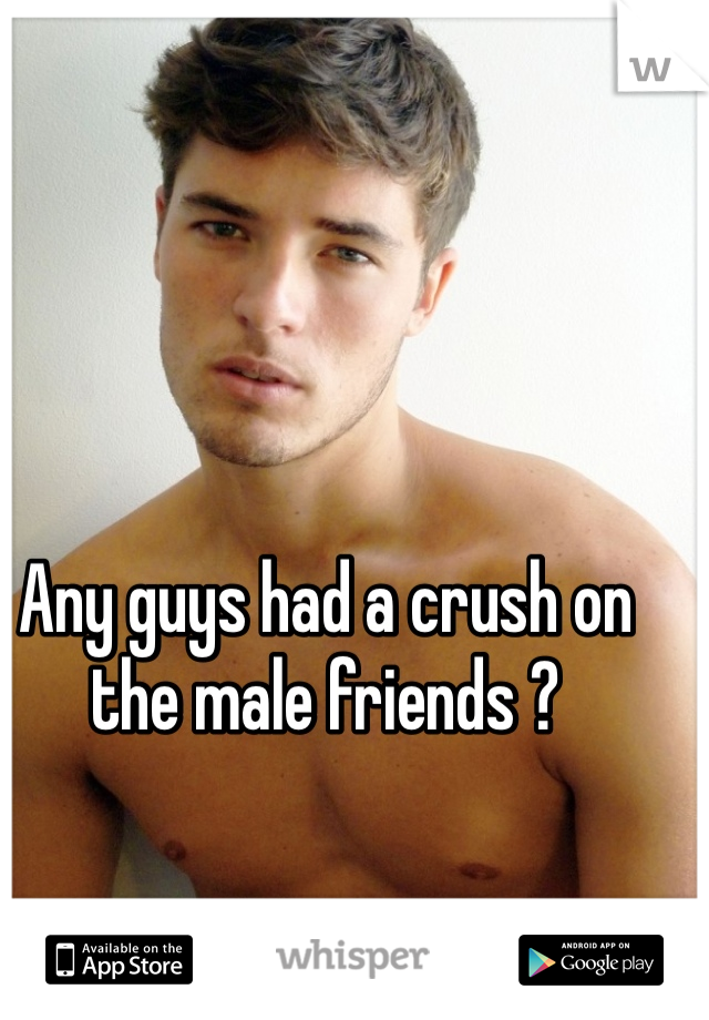 Any guys had a crush on the male friends ?