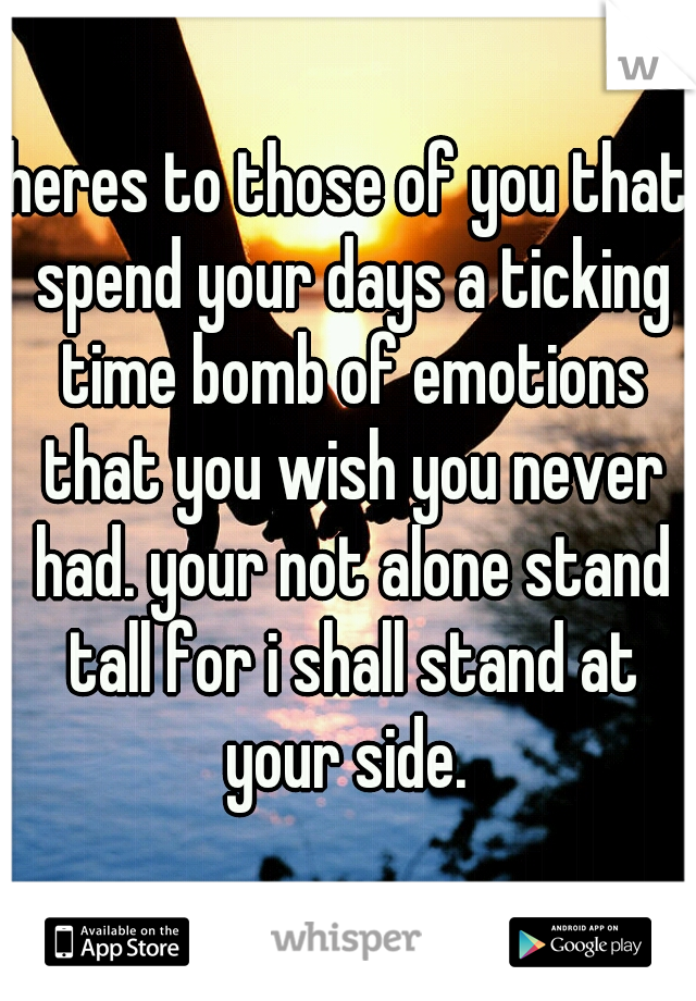 heres to those of you that spend your days a ticking time bomb of emotions that you wish you never had. your not alone stand tall for i shall stand at your side.