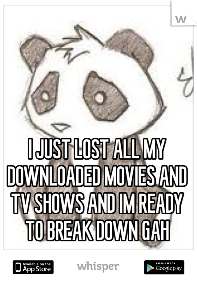 I JUST LOST ALL MY DOWNLOADED MOVIES AND TV SHOWS AND IM READY TO BREAK DOWN GAH
