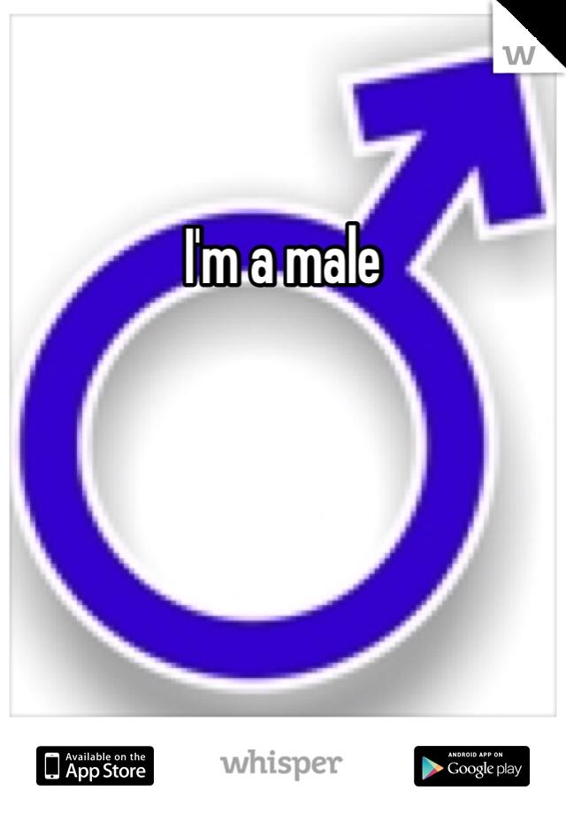 I'm a male