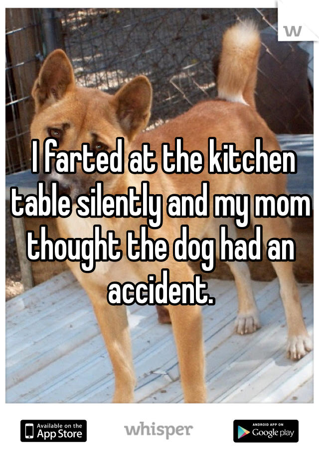 I farted at the kitchen table silently and my mom thought the dog had an accident.