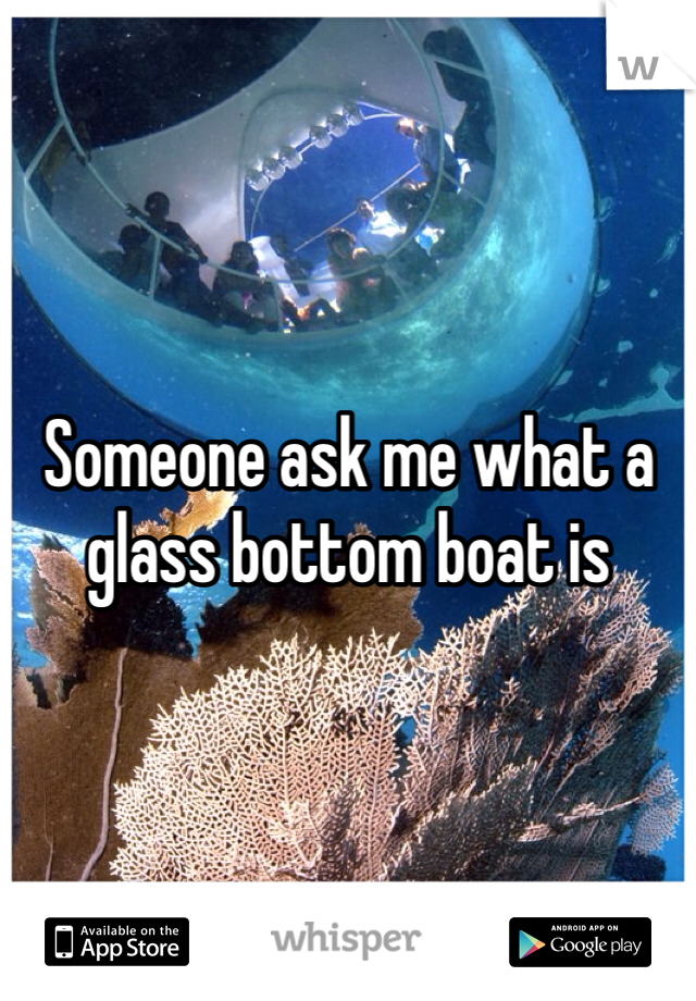 Someone ask me what a glass bottom boat is