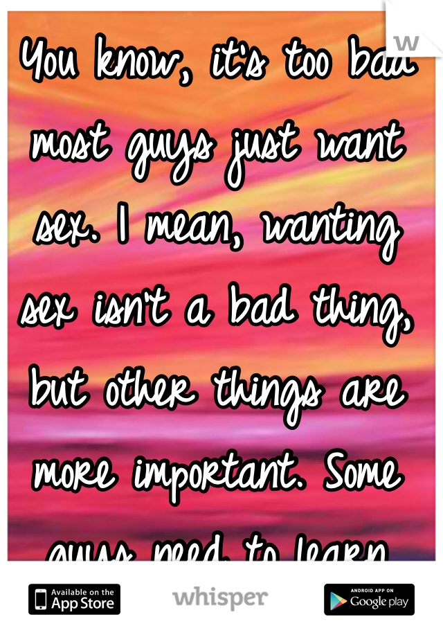 You know, it's too bad most guys just want sex. I mean, wanting sex isn't a bad thing, but other things are more important. Some guys need to learn that. I just want to find one that wants to get to know me.