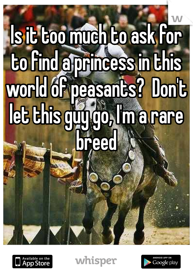 Is it too much to ask for to find a princess in this world of peasants?  Don't let this guy go, I'm a rare breed