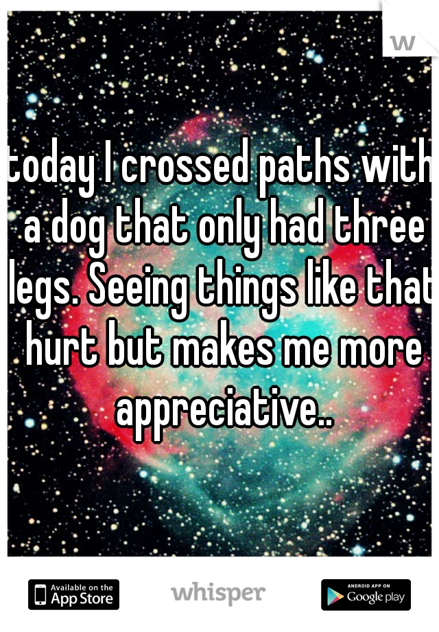 today I crossed paths with a dog that only had three legs. Seeing things like that hurt but makes me more appreciative..