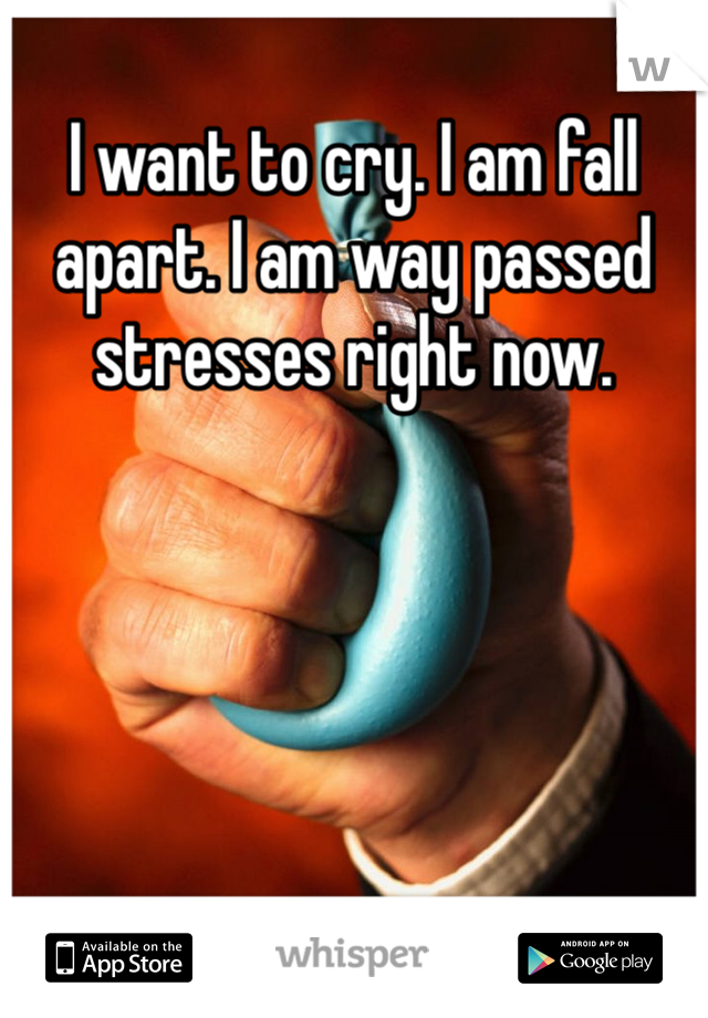 I want to cry. I am fall apart. I am way passed stresses right now.